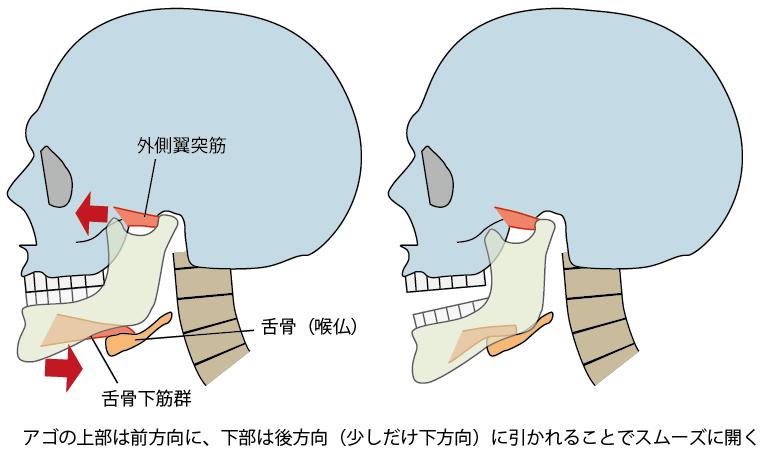 顎関節症になる生活習慣